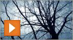 Nova uitzending: Alternatieve behandelingen voor depressies