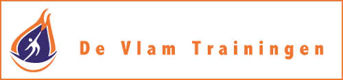 Logo De Vlam Trainingen